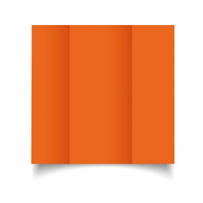Mandarin Orange Dl Gate Fold Card Blank 01