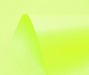 Neon Kiwi