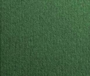 Nettuno Verde Foresta