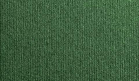 Verde Foresta Nettuno Linen Effect Card 280gsm