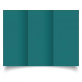 Teal Dl Tri Fold Card Blank 01