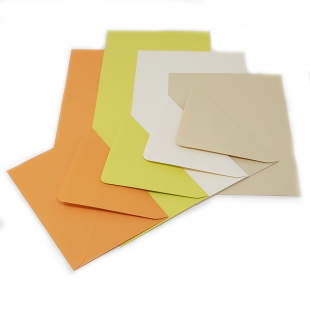 Tropical Collection Cards A6