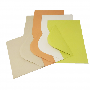 Tropical Collection Assorted Card pack  in A5 or A6