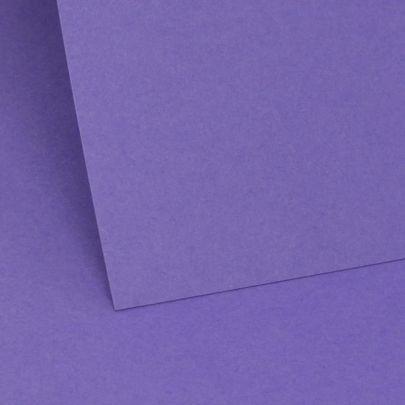 Violet Plain