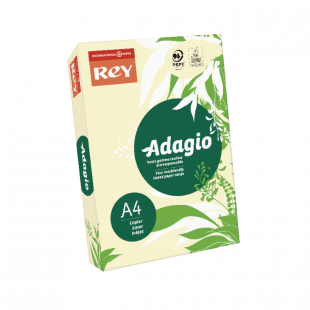 A4 Rey Adagio Ivory 80gsm | 500 Sheets