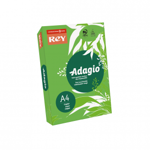 A4 Rey Adagio Deep Green 80gsm | 500 Sheets