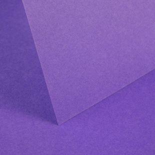 Dark Violet