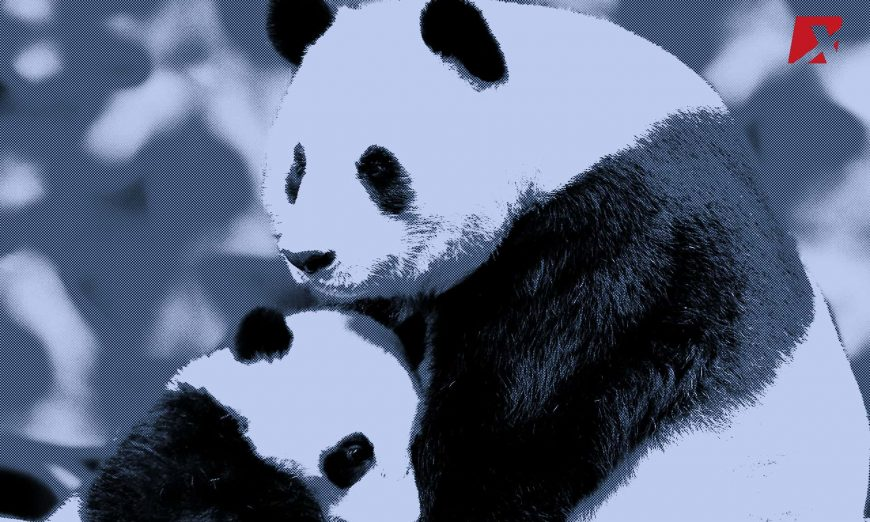 Panda Blockchain CHina
