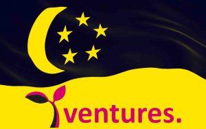 Y Ventures Group