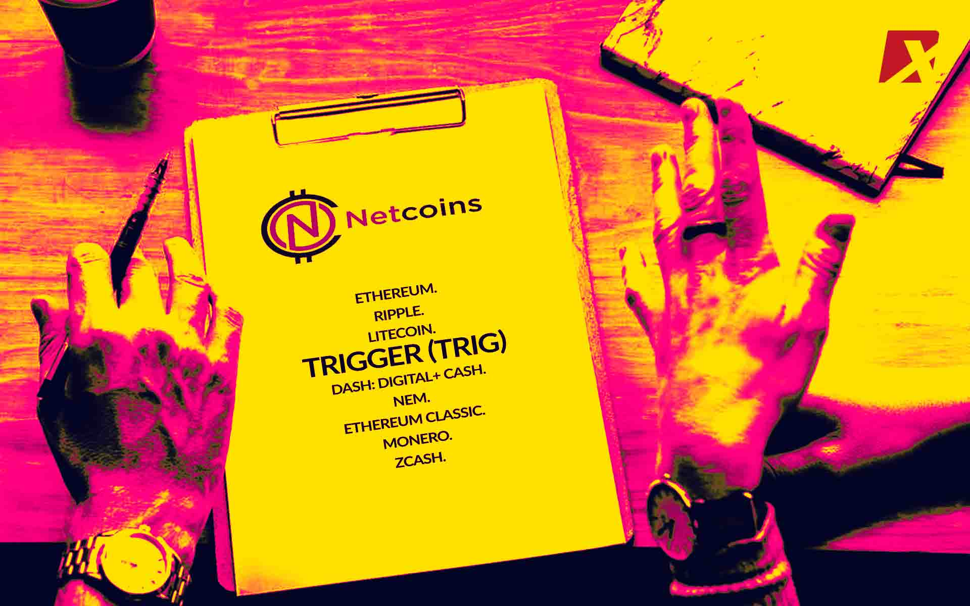 Netcoins Holdings Exchange For Consumers & Retailers Lists TRIG Coin