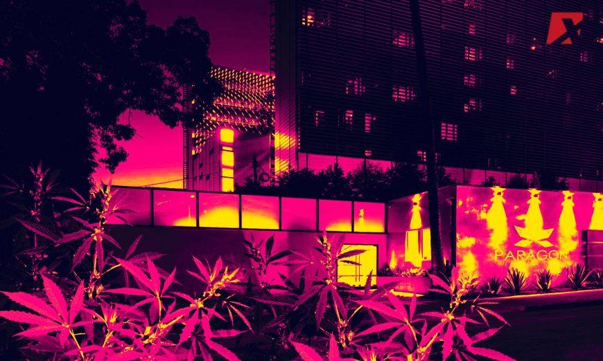 Paragon Cannabis