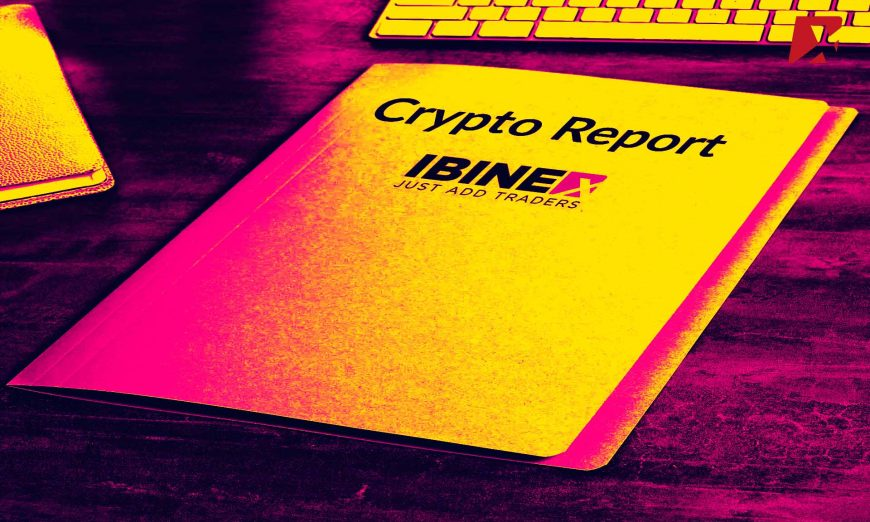 Ibinex Detailed Cryptocurrency Market Report