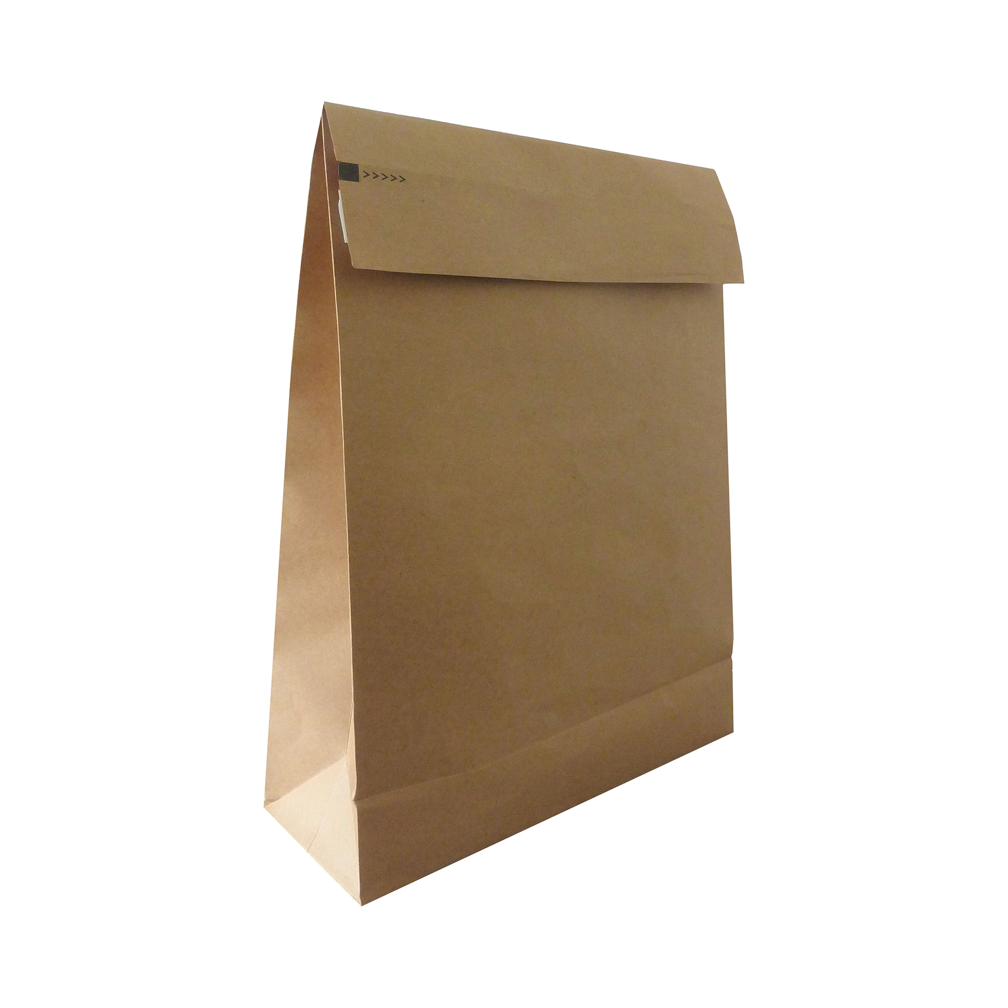 Standard envelopes Kraft Mlr Eco Expanding Block Btm & Side Gusset Dbl P&S 400x500x100mm +100 flap Man RefRBL10531 Pack 50