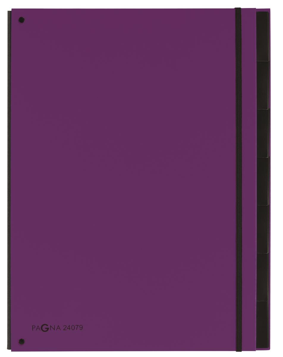 Pagna Master Organiser Hardback 12-compartments Elasticated Strap A4 Purple Ref 2407912 [Pack 8]