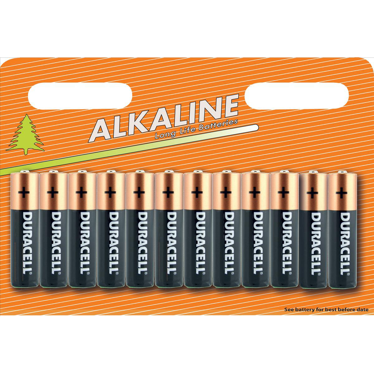 AAA Duracell Plus Power Battery Alkaline AA Ref AADURIND12 Pack 12