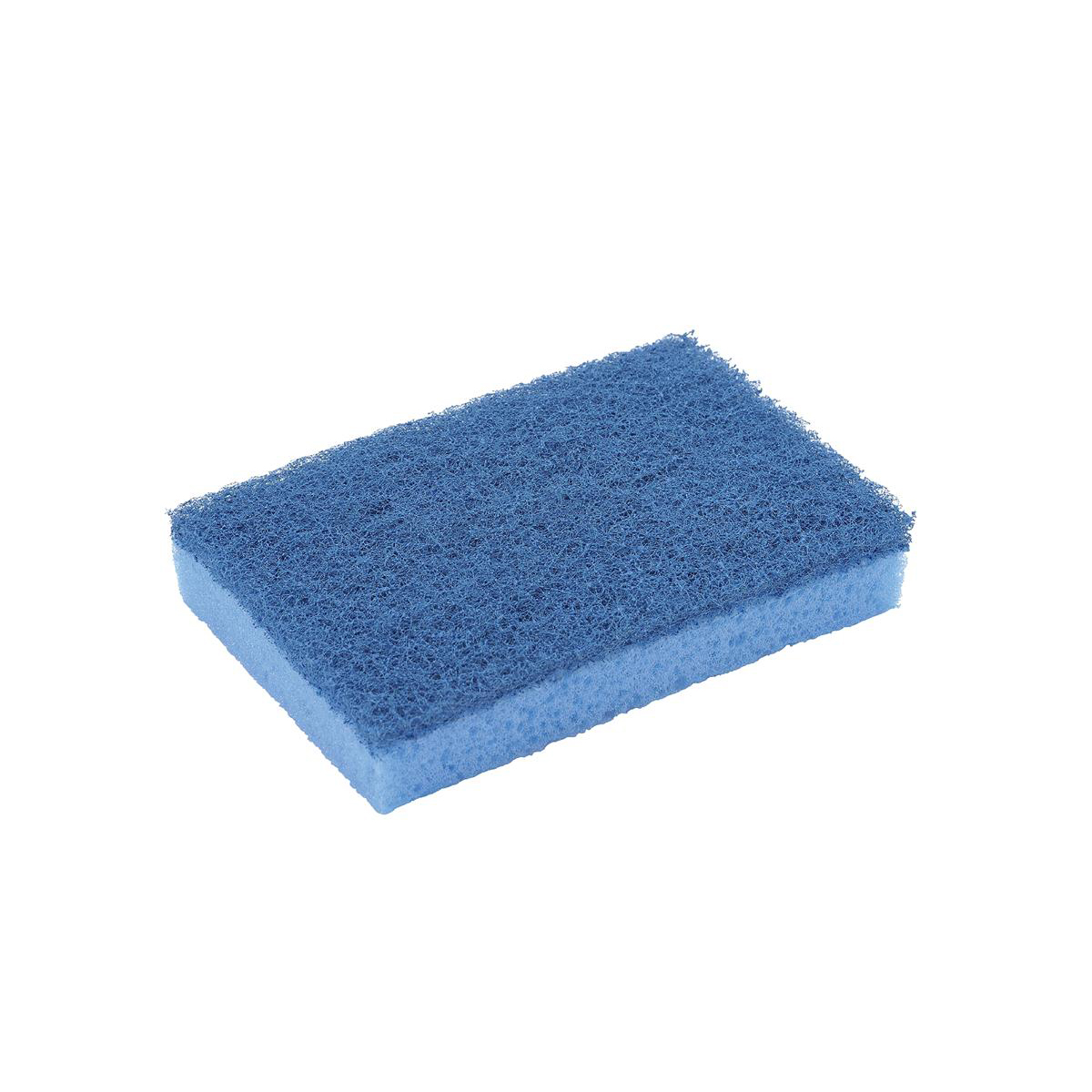 Sponge Scourer High Quality Non Scratch Blue Pack 10