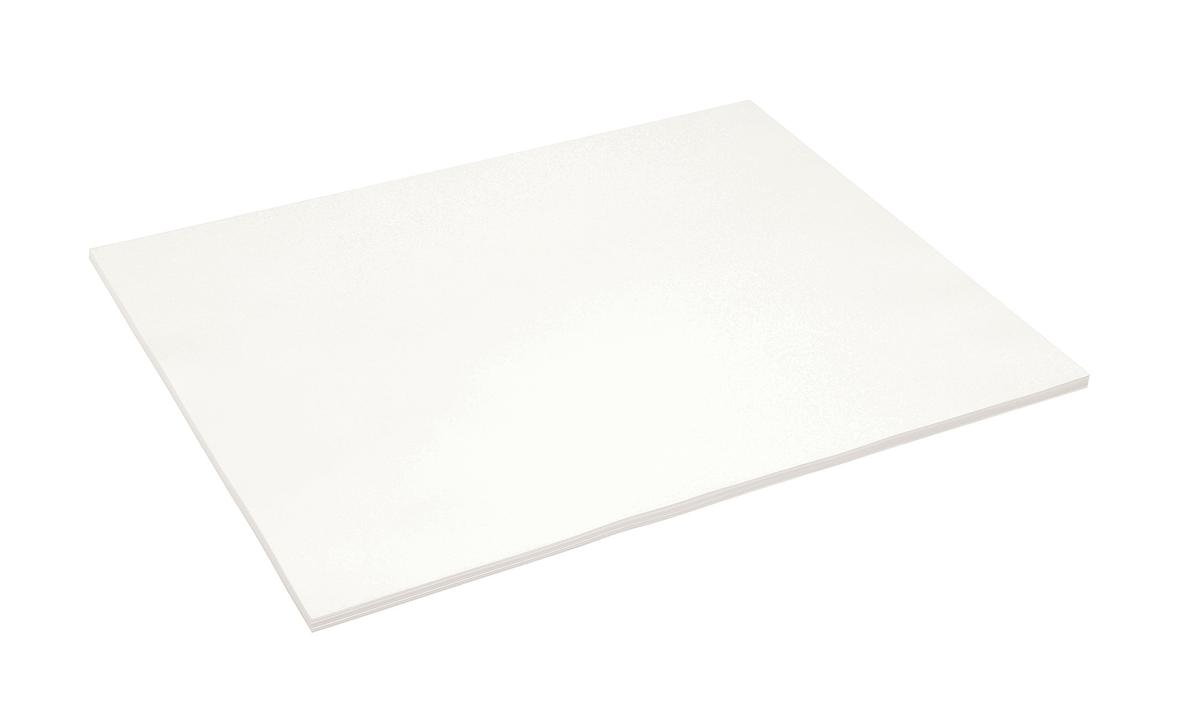 Blotting Paper Full Demy W570xD445mm Flat White [50 Sheets]