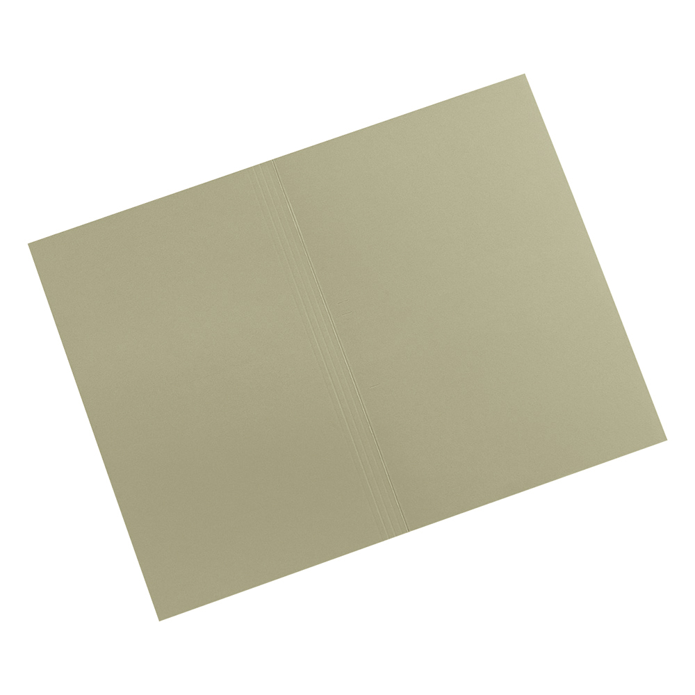 Image for Business Premium Square Cut Folders Manilla 315gsm Foolscap Green [Pack 100]