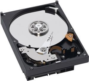 WD AV 500GB SATA 6Gb/s 64MB 3.5 inch Hard Drive (Internal)