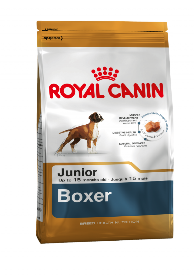boxer junior royal canin. Black Bedroom Furniture Sets. Home Design Ideas