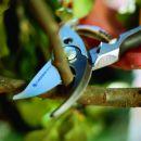 GARDENA 08701-20 Premium Gartenschere BP 30 Thumbnail