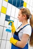 GLORIA Feinsprüher Clean Master CM 05 - 0,5 l Thumbnail