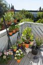 GARDENA 01265-20 city gardening Urlaubsbewässerung Thumbnail