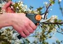 FISKARS PowerGear Rollgriff-Gartenschere, Bypass 111520 Thumbnail