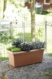 ELHO Green Basics GardenXXL Pfl.kasten 100 cm - mild tonrot - 272394 Thumbnail