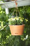 ELHO Green Basics Hängeampel 28 cm - tonrot - 272422 Thumbnail