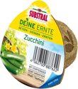 SUBSTRAL Deine Ernte Saatkegel Zucchini 1 Stück