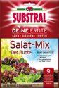 SUBSTRAL Deine Ernte Salat-Mix Der Bunte 250 g