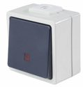 as-Schwabe 62453 Taster beleuchtet (Schließer), 2 Leitungseinführungen IP 54