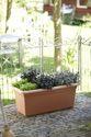 ELHO Green Basics GardenXXL Pfl.kasten 80 cm - mild tonrot - 272392