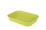 ELHO Green Basics Gewächshaus-Schale M 36x26 - lime grün - 293867