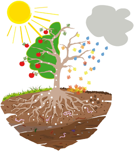 OSCORNA Natur-Kreislauf