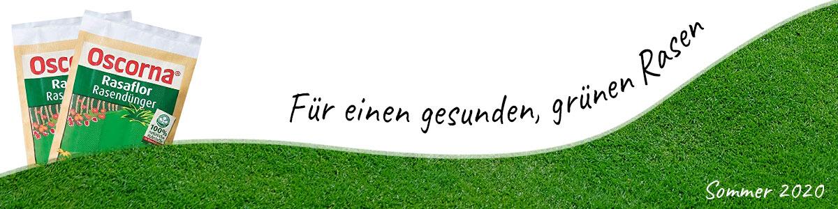 Sommer Rasendüngung Sommerrasendünger Oscorna Rasaflor