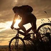 Bikes & Beers