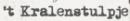 Kortingscode kralenstulpe voor 15% korting