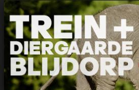 Dagretour NS en Entree Diergaarde Blijdorp voor €27 volwassenen en €16 kids