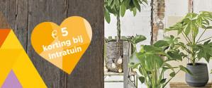 Koop een VVV bon van €10 en ontvang  gratis een Intratuin cadeaubon t.w.v.€5