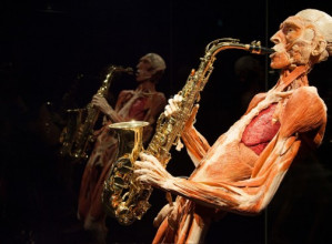 Entreeticket BODY WORLDS Amsterdam voor €11,95