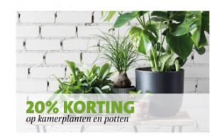 Kamerplanten en potten met 20% korting