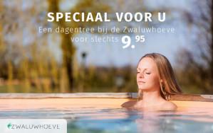 Dagentree wellnessresort Zwaluwhoeve voor € 9,95
