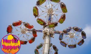 Dagentree Kernie's Familiepark in Kalkar (All inclusive) voor €18,95