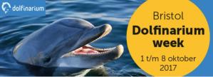 2e kaartje Dolfinarium gratis bij je aankoop bij Bristol