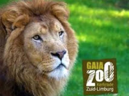 Tickets GaiaZOO voor €12,50