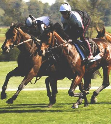 Madrid Stag Do Ideas - Horse Racing