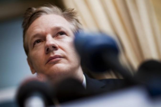 WikiLeaks: dopo 6 anni Svezia interroga Julian Assange. Alla finestra il gatto