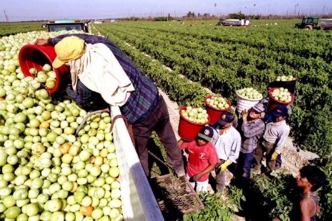 640 mila pensioni italiane pagate dai contribuiti dei migranti